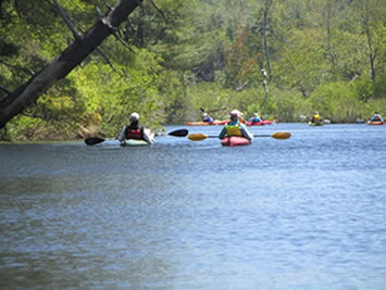 Branch River Paddle